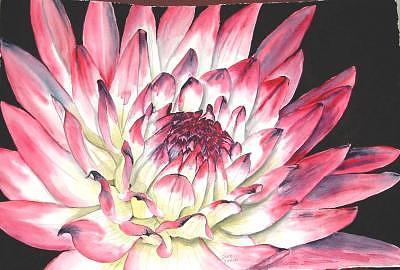 Dahlia Painting - Dahlia 7 by Diane Ziemski