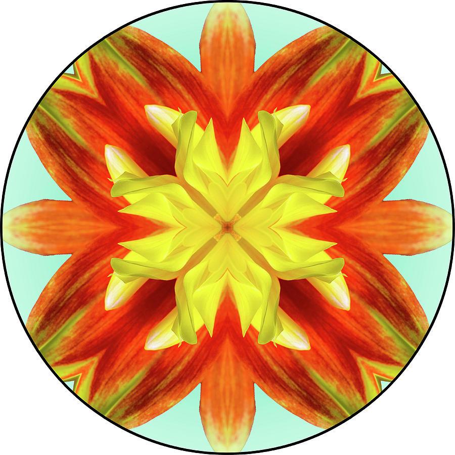 Dahlia Pooh Digital Mandala 04 Digital Art by Digital Mandala