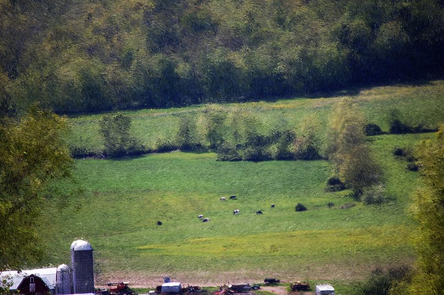 Digital Photo Photograph - Dairy Farm In The Finger Lakes by David Lane