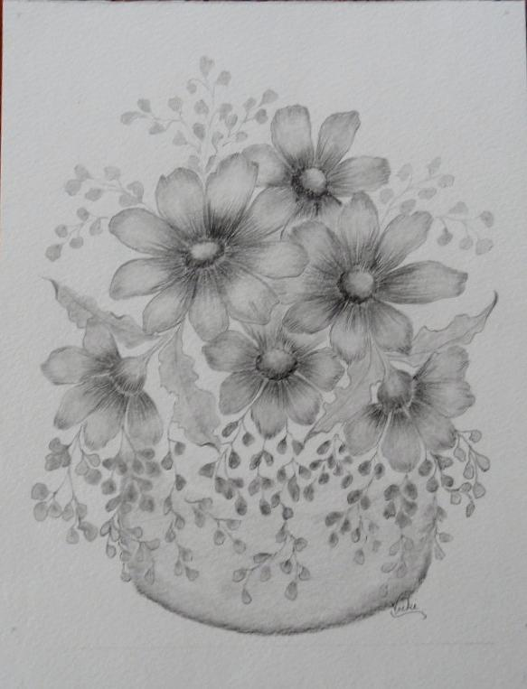 Daisies with Maidenhair Fern Drawing by Vicki Thompson