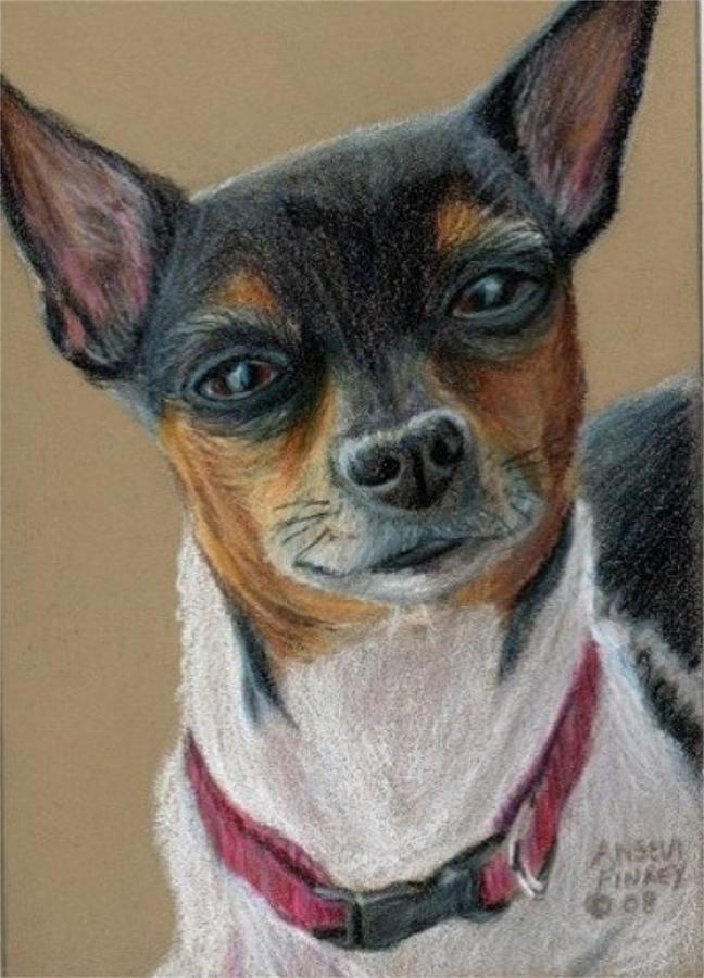 Toy Fox Terrier Painting - Daisy by Angela Finney