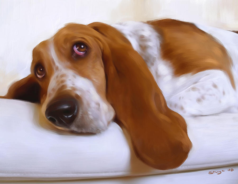 Dog Painting - Daisy by Simon Sturge