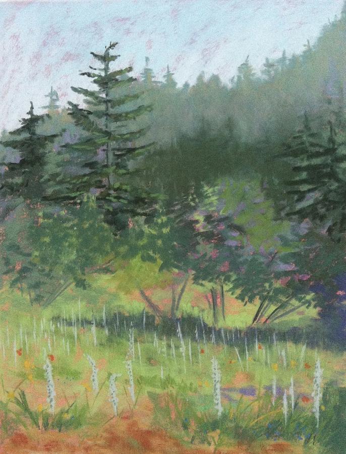 Meadow Painting - Dale Creek Meadow by Janet Biondi
