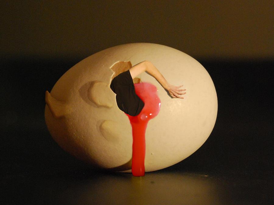 Dali Egg Photograph by Erik Krieg