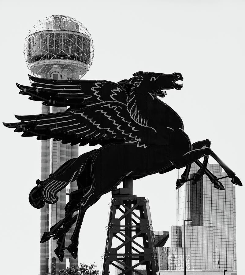 Dallas Pegasus B W 030218 by Rospotte Photography