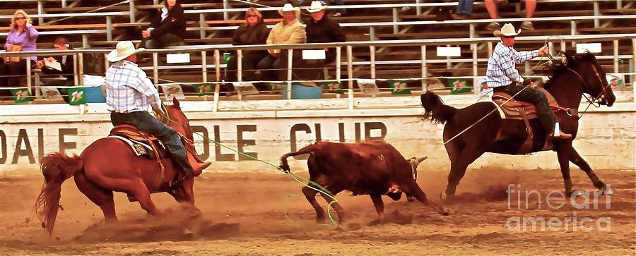 Rodeo Photograph - Dally Off by Gus McCrea