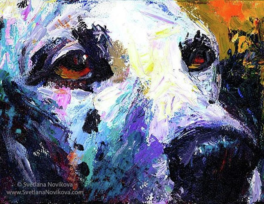 Impressionism Photograph - Dalmatian Dog Close-up Painting By by Svetlana Novikova