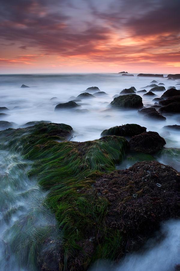 California Photograph - Dana Point Sunset by Eric Foltz