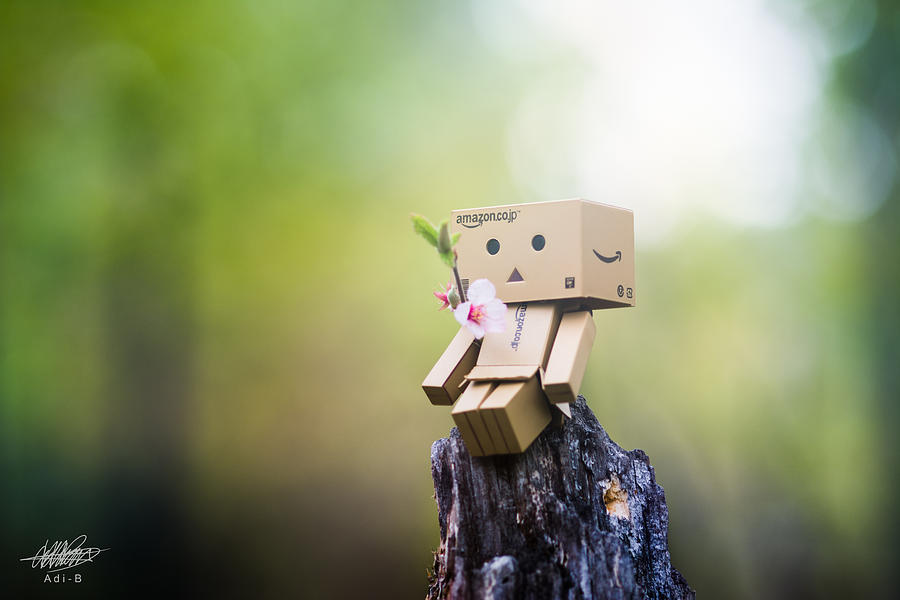 Photograph - Danbo - Flower by Adnan Bhatti