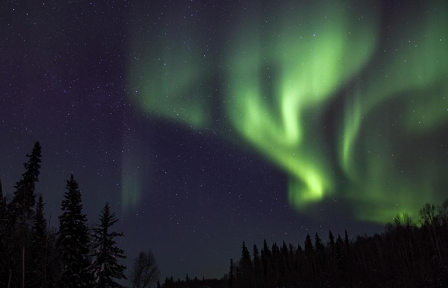Northern Lights Photograph - Dance by Patti Lynn