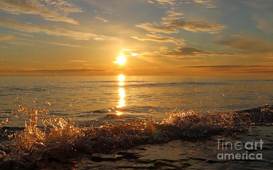 Sun Photograph - Dancing In The Sunlight 5 by Eric Curtin