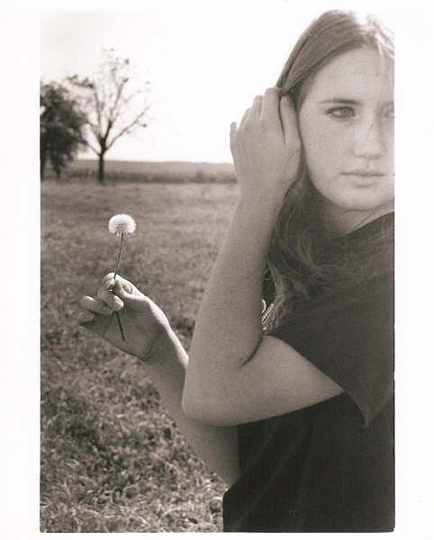35mm Photograph - Dandelion by Ashley Cameron