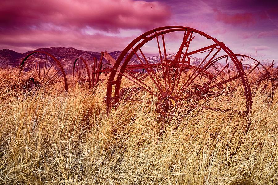 Dangberg Home - Farm Machinery by Vinnie Oakes