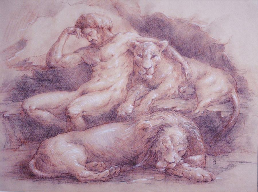 Lion Drawing - Daniel by Mara Buck