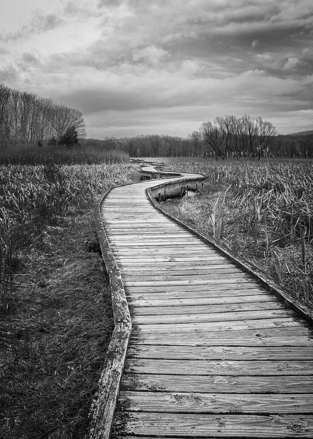 Appalachian Trail Photograph - Dark Appalachian Trail by John Prause