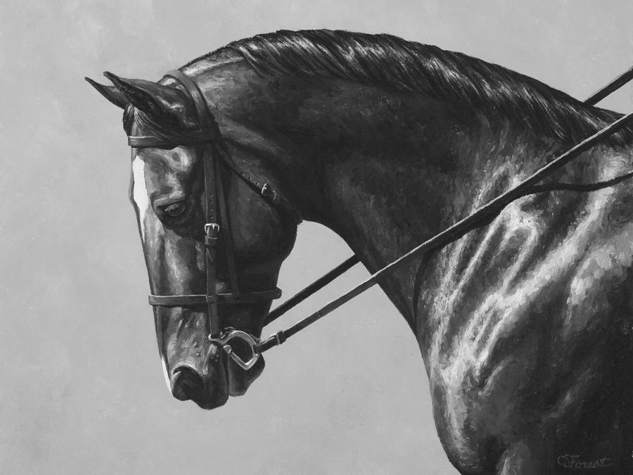 Horse painting dark brown dressage horse black and white by crista forest