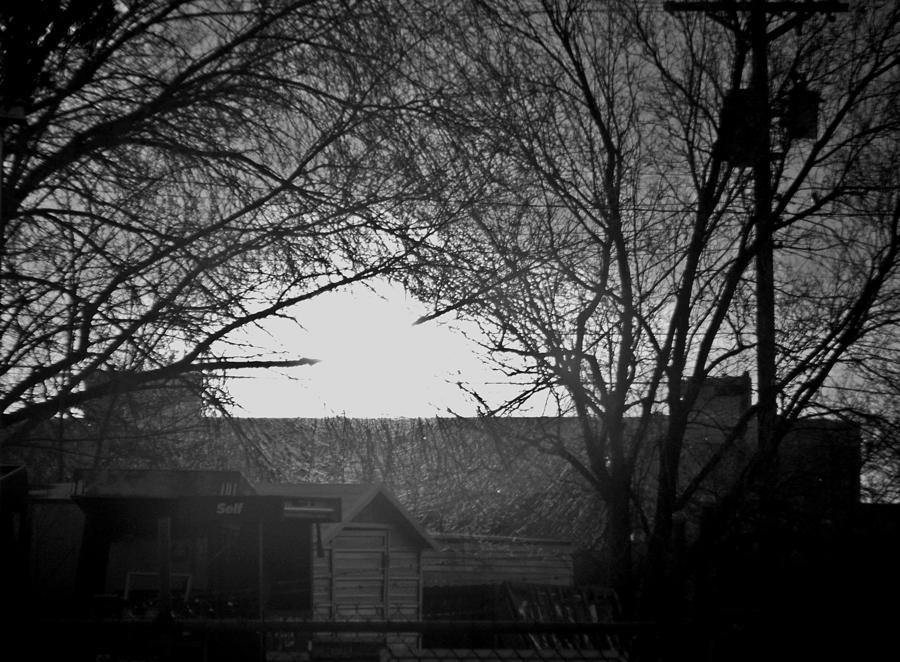 Dark Embrace Photograph