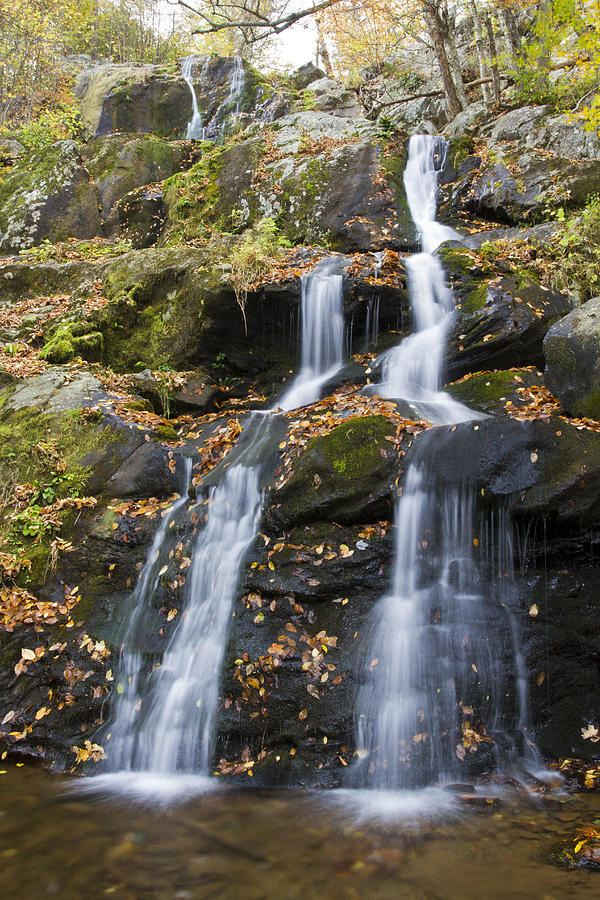 Shenandoah Photograph - Dark Hollow Falls Shenandoah National Park by Pierre Leclerc Photography