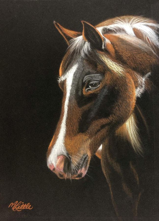 Dark Horse by Marlene Little