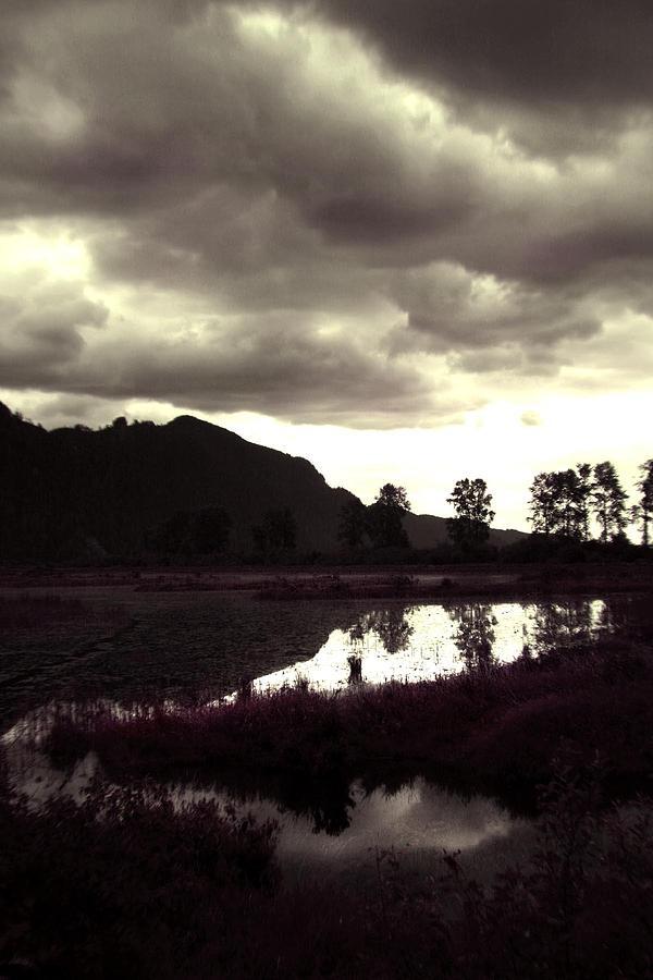 Dark Digital Art - Dark Lake by Liz Towers