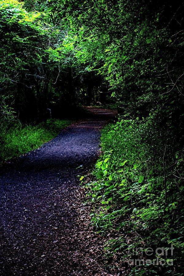 Dark Path by JB Thomas