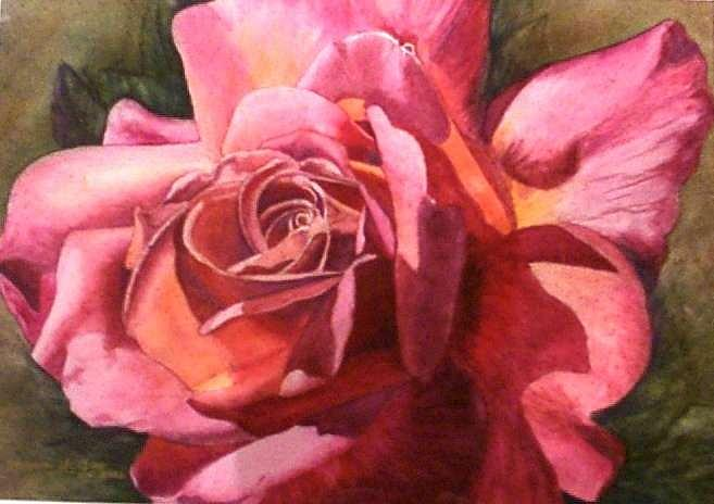 Dark Pink Rose Painting - Dark Pink Rose by Barb McGee
