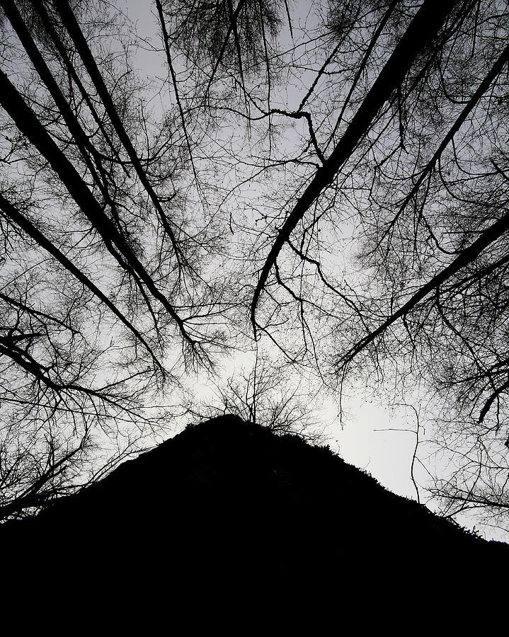 Dark Shadows by Bob Cournoyer