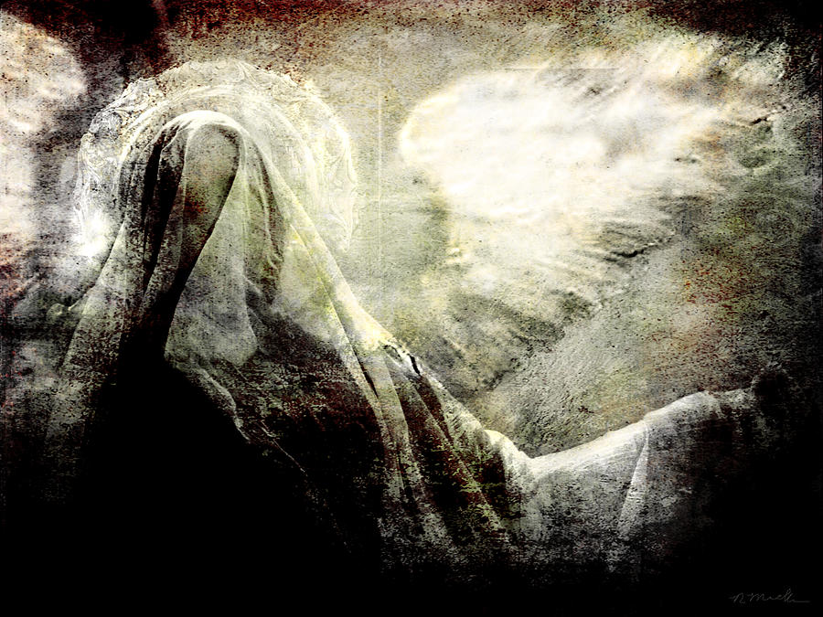 Dark Photograph - Dark Veil by Perennial Dreams Studios