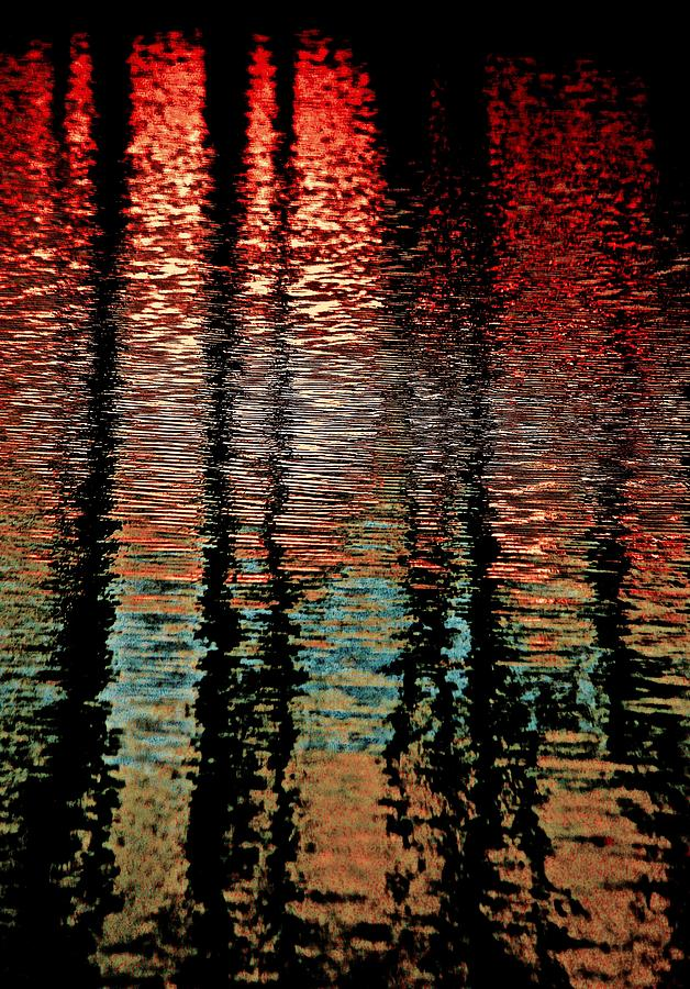 Landscape Photograph - Dark Waters by Gillis Cone