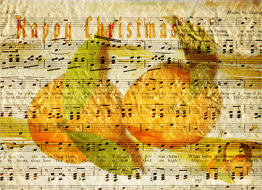 Clementines Digital Art - Darling Clementines For Christmas by Sarah Vernon