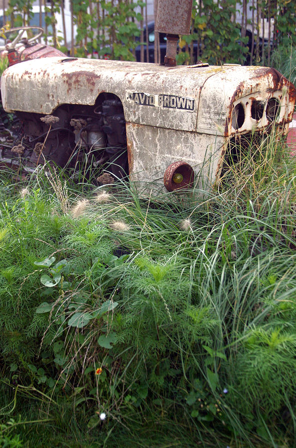 Photographer Photograph - David Brown Grown by Jez C Self