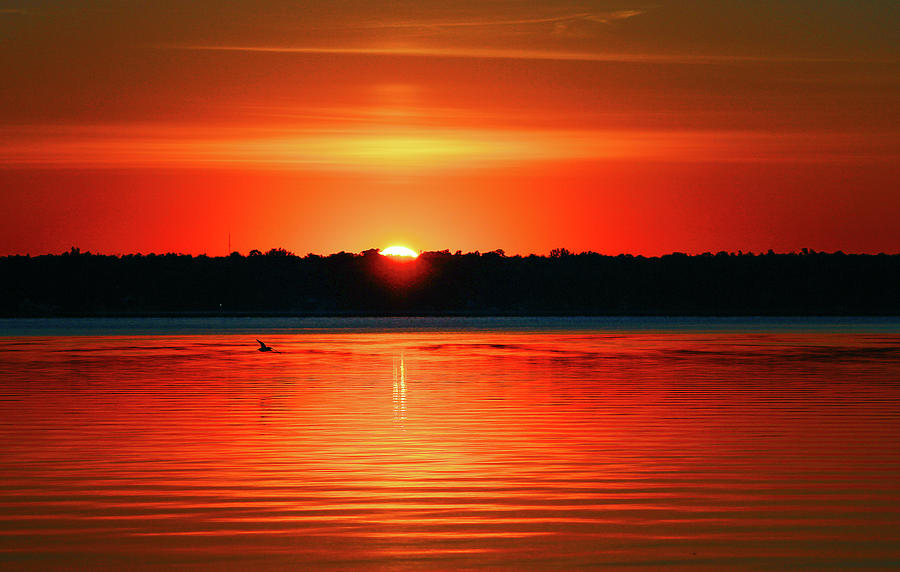 Sunrise Photograph - Dawn Early Light by Lisa Roskey Photography