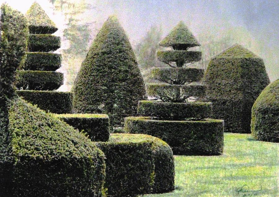 Topiaries Mixed Media - Dawn In A Topiary Garden   by Angela Davies