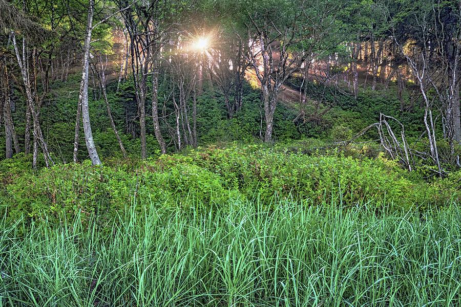 Sunbeams Photograph - Dawn Light by Geoffrey Ferguson