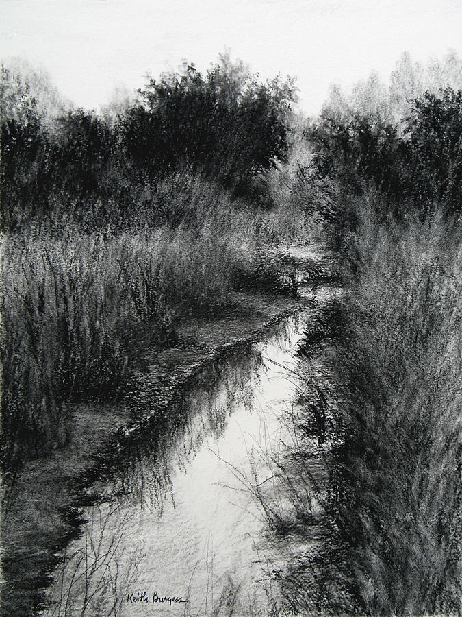 Charcoal Drawing - Dawn Marsh by Keith Burgess