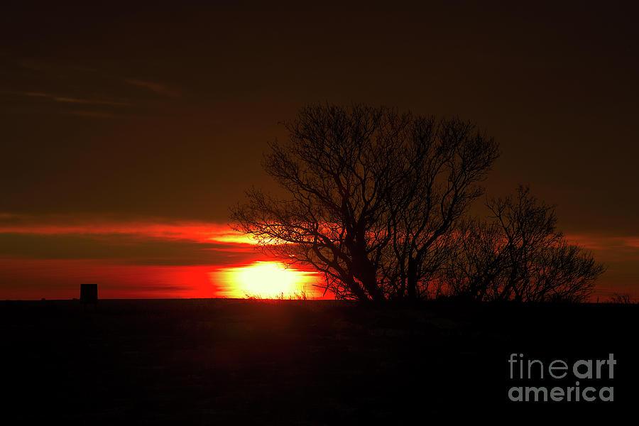 Canada Photograph - Dawns Delight by Ian McGregor