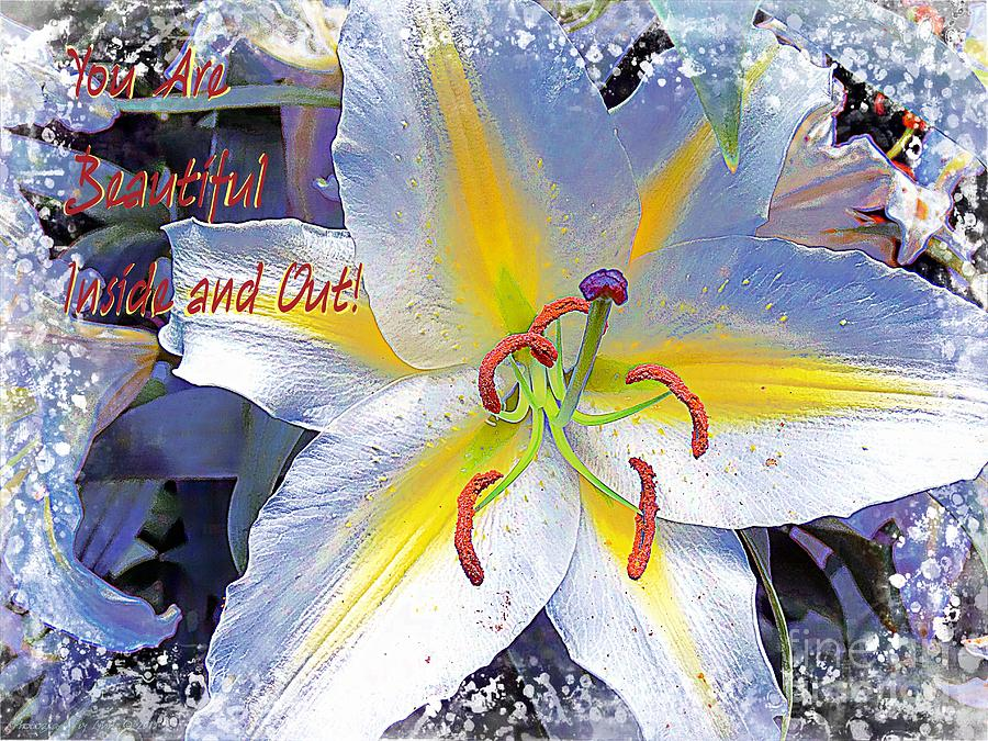 Day Lily Beauty Photograph