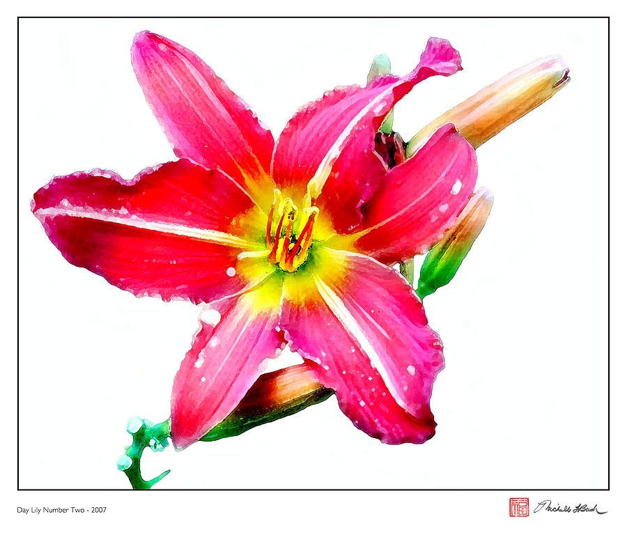 Flora Digital Art - Day Lily No 2 by Michelle Bush