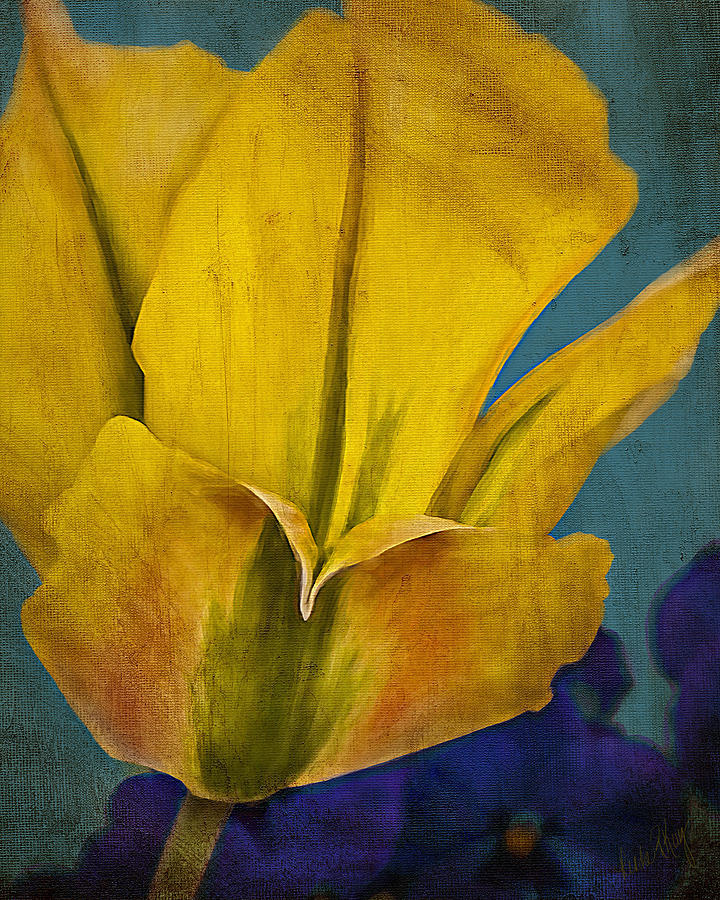 Day Lily Textured Painting