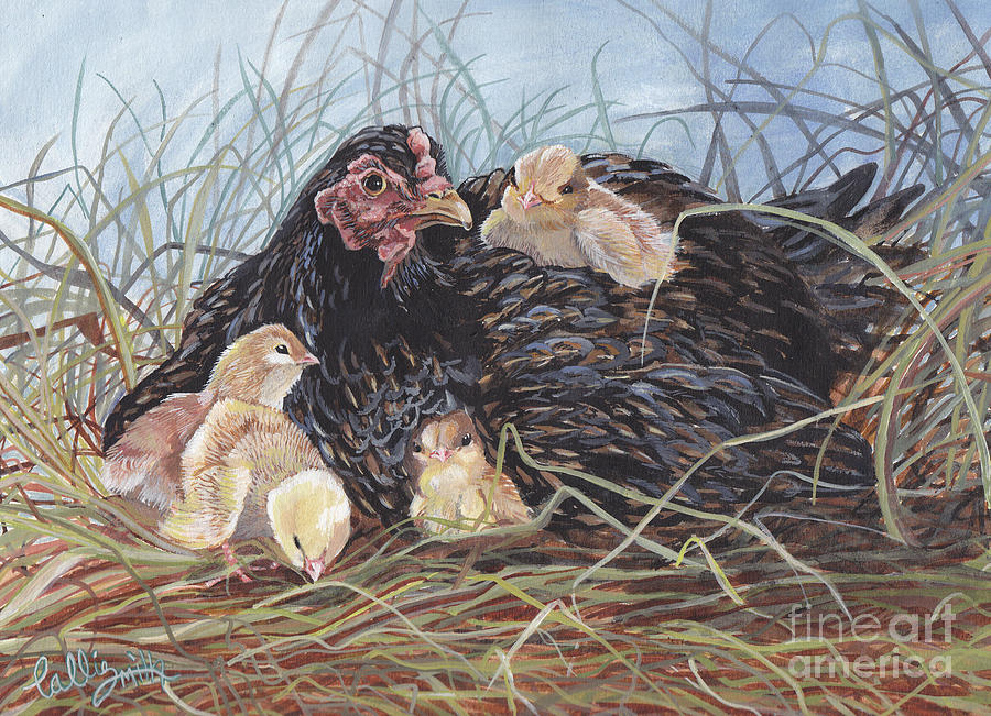 Hen With Chicks Painting - Day Two by Callie Smith