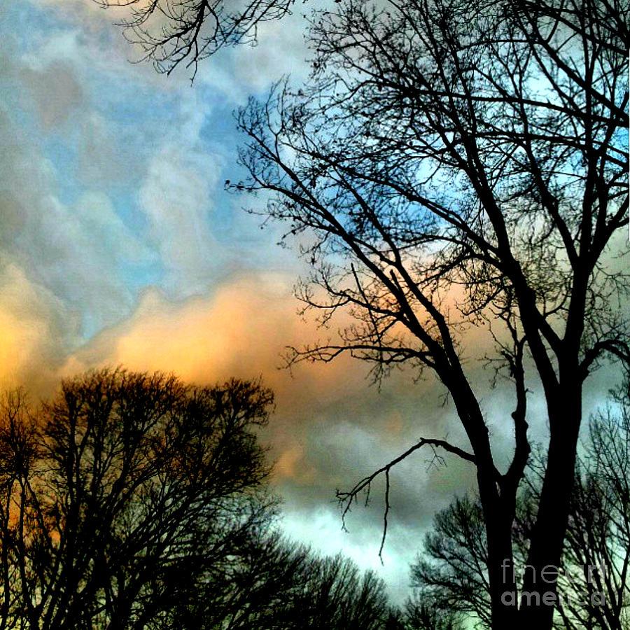 Daydream by Brianna Kelly