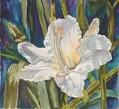 Watercolor Painting - Daylily 4 by Diane Ziemski