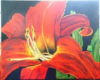 Daylily Painting - Daylily On Canvas by Diane Ziemski