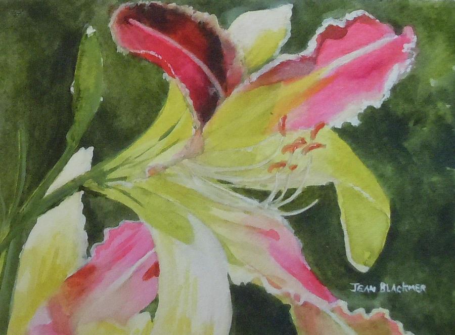 Daylily Painting - Daylily Study 1 by Jean Blackmer
