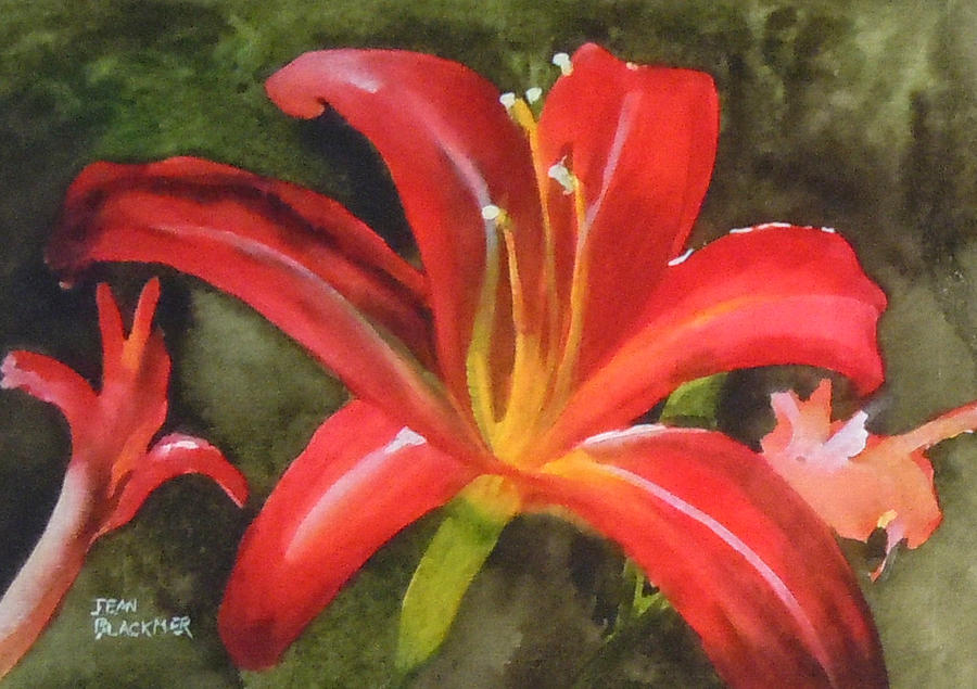 Red Painting - Daylily Study IV by Jean Blackmer