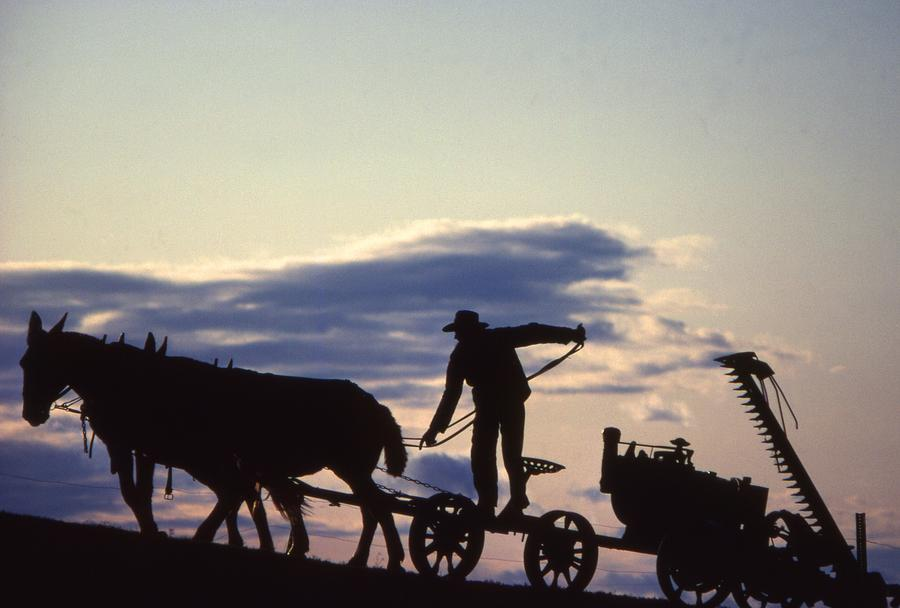 Days End Amish Farmer Barnhill Photograph