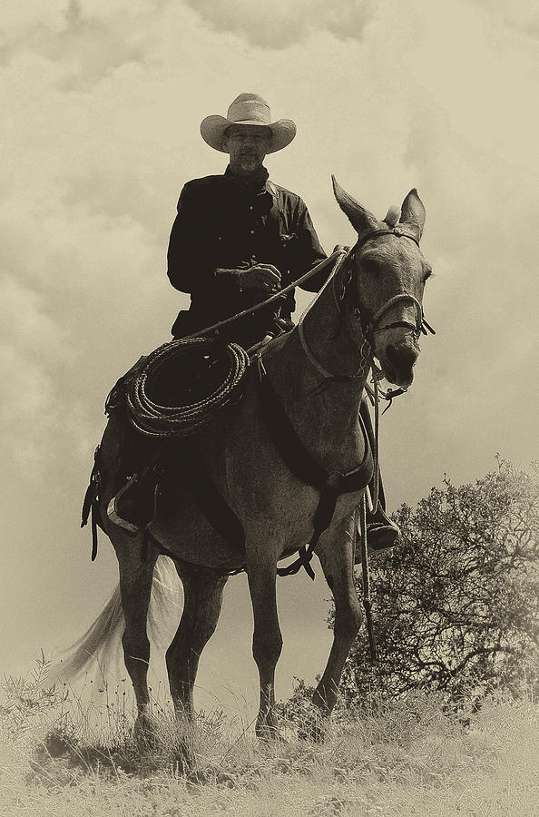 Cowboy Photograph - Days Of Old Miss Aleto And The Cowboy by Darby Donaho