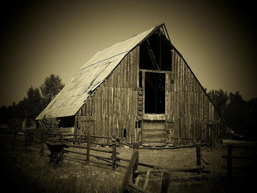 Barn Photograph - Days Gone By by Terry Jones