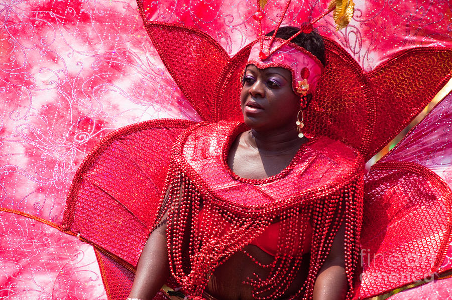 Festival Photograph - Dc Caribbean Carnival No 18 by Irene Abdou