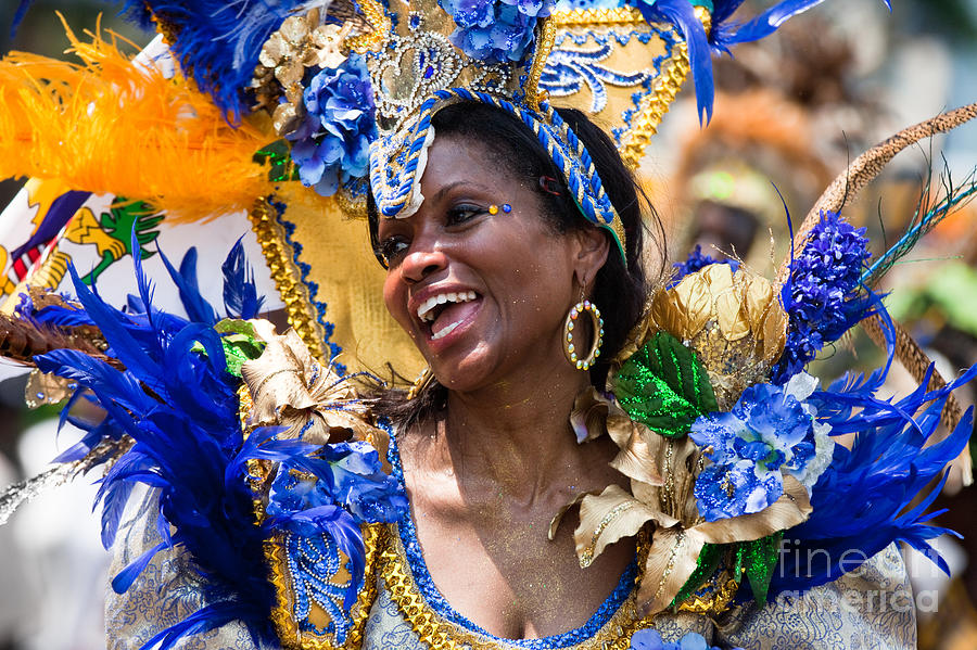 Festival Photograph - Dc Caribbean Carnival No 20 by Irene Abdou